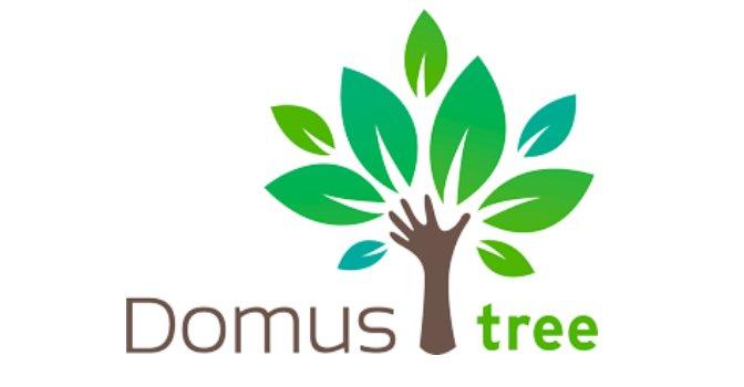 DomusTree, el proyecto intergeneracional de sostenibilidad y reforestación de la Fundación DomusVi.