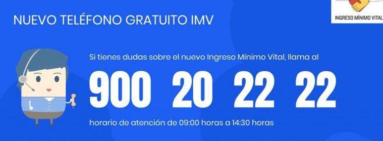 Ingreso Mínimo Vital (IMV)