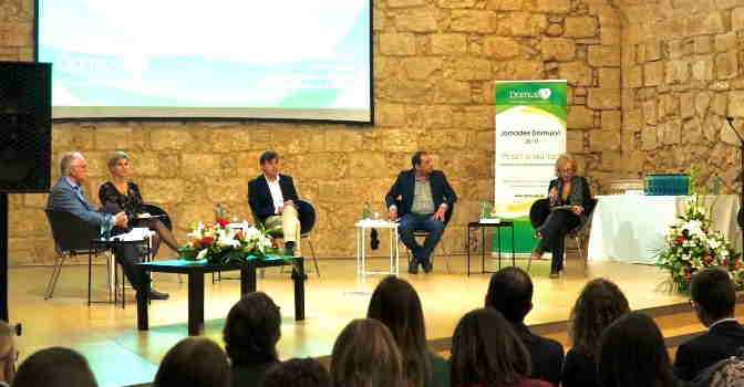 Se celebra jornada intergeneracional de DomusVi en Mallorca