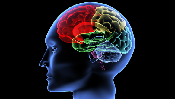 El rincón de la ONG. La oxigenoterapia hiperbárica podría revertir la enfermedad de Alzheimer y la demencia