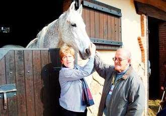 L'Onada Serveis desarrolla terapia con animales como equinoterapia