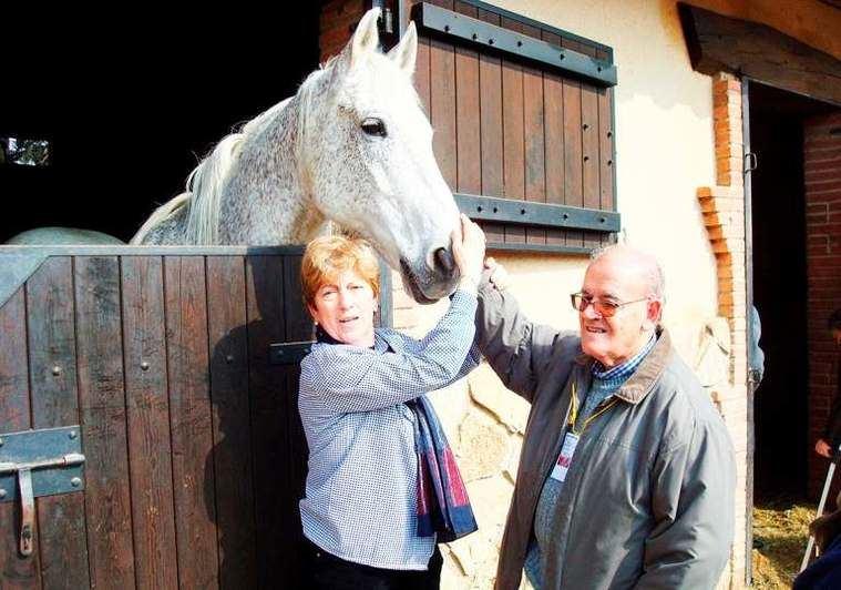 L'Onada Serveis desarrolla terapia con animales para el envejecimiento activo de los mayores